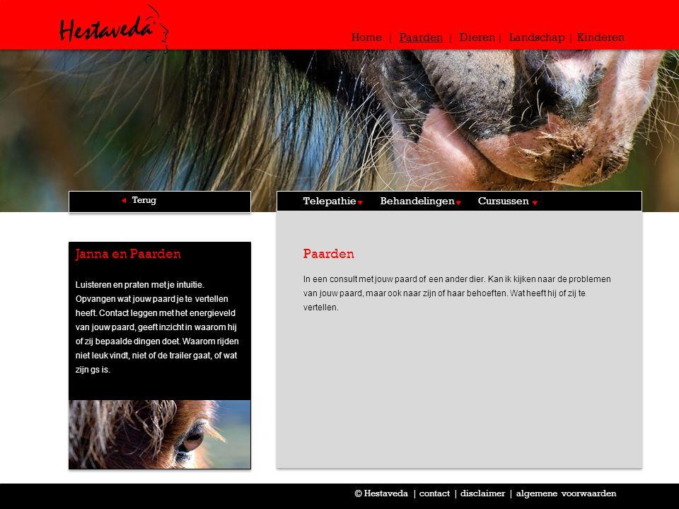 Consult In een consult met jouw paard of een ander dier.
