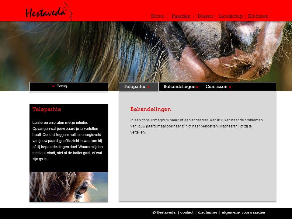 Behandelingen In een consult met jouw paard of een ander dier. Kan ik kijken naar de problemen van jouw paard, maar ook naar zijn of haar behoeften. W