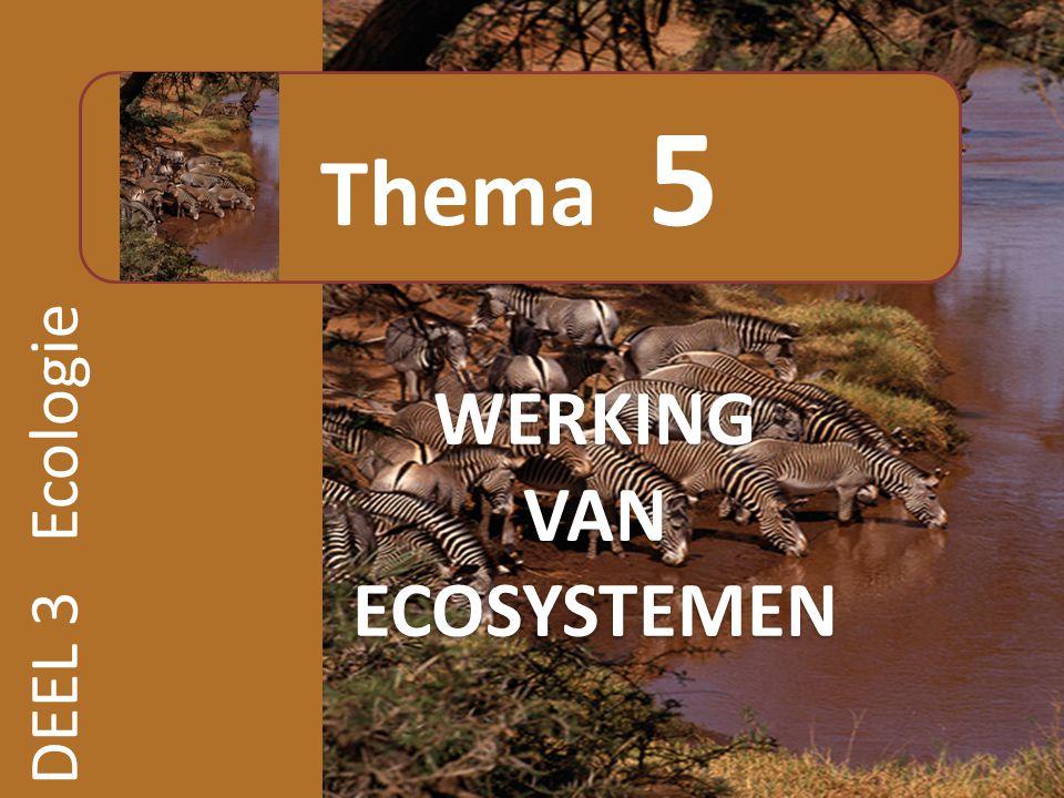 Thema 5 WERKING VAN ECOSYSTEMEN DEEL 3 Ecologie