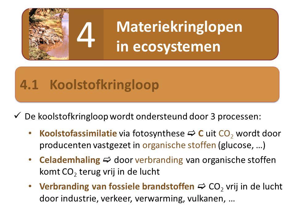 Materiekringlopen in ecosystemen 4 4.1Koolstofkringloop  De koolstofkringloop wordt ondersteund door 3 processen: • Koolstofassimilatie via fotosynth