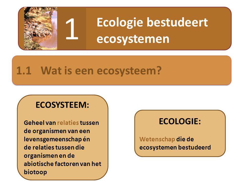  Ecosysteem met hoge dynamiek: • Sterk schommelende abiotische factoren (bv.