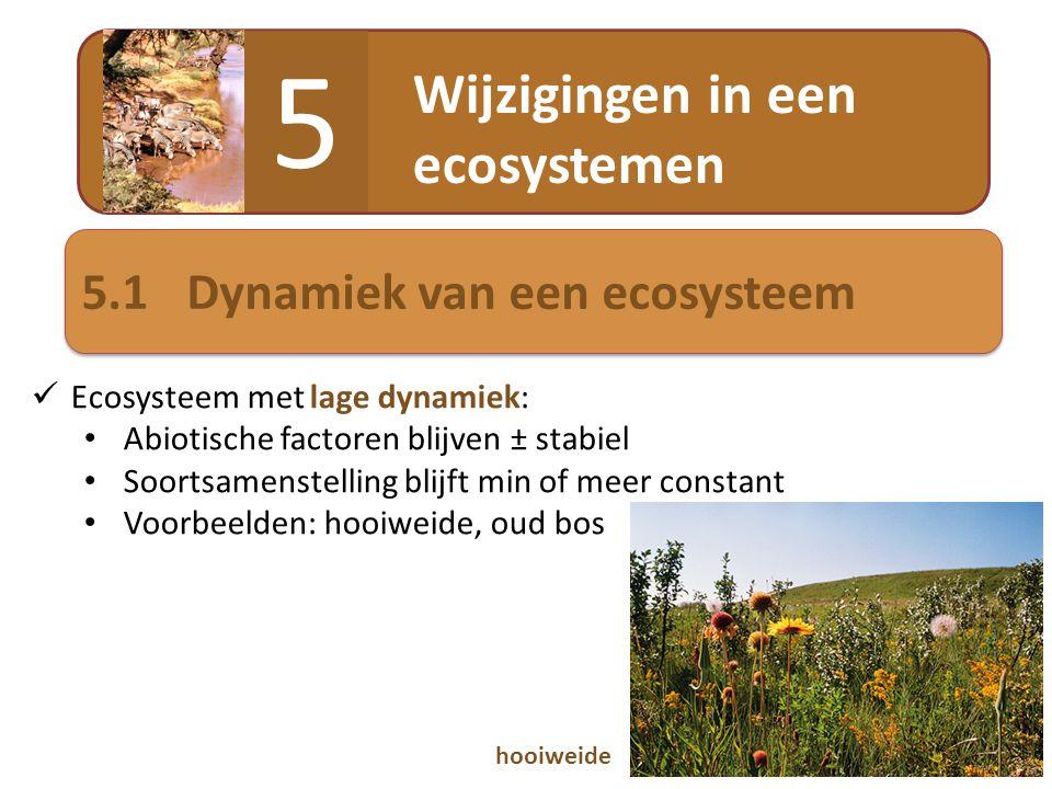 Wijzigingen in een ecosystemen 5 5.1Dynamiek van een ecosysteem  Ecosysteem met lage dynamiek: • Abiotische factoren blijven ± stabiel • Soortsamenst