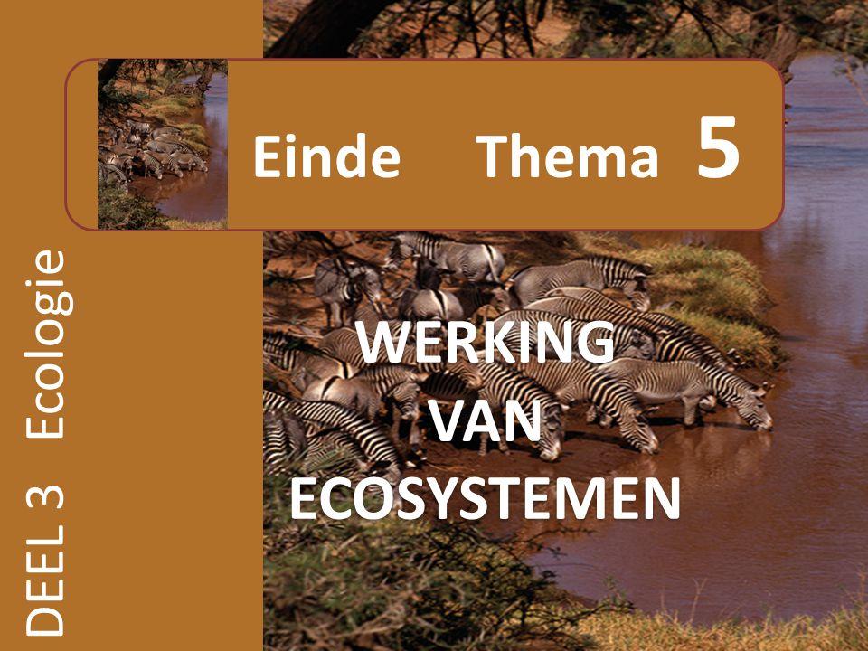 Einde Thema 5 WERKING VAN ECOSYSTEMEN DEEL 3 Ecologie