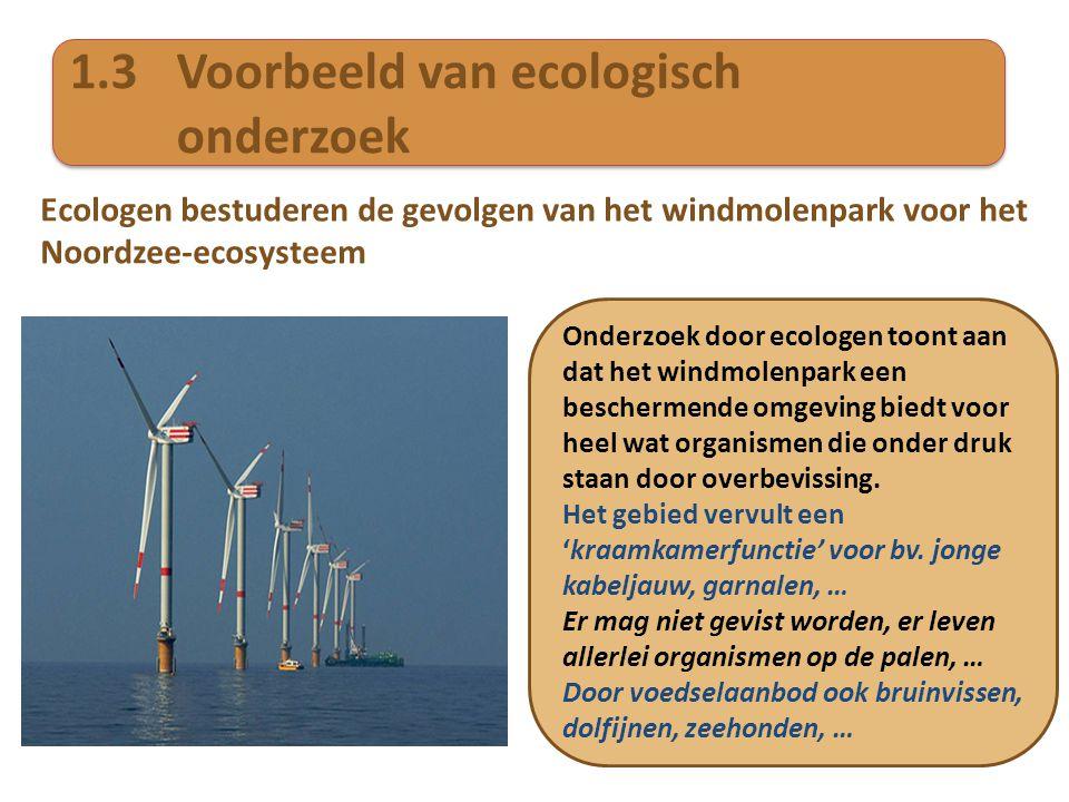 1.3Voorbeeld van ecologisch onderzoek Ecologen bestuderen de gevolgen van het windmolenpark voor het Noordzee-ecosysteem Onderzoek door ecologen toont