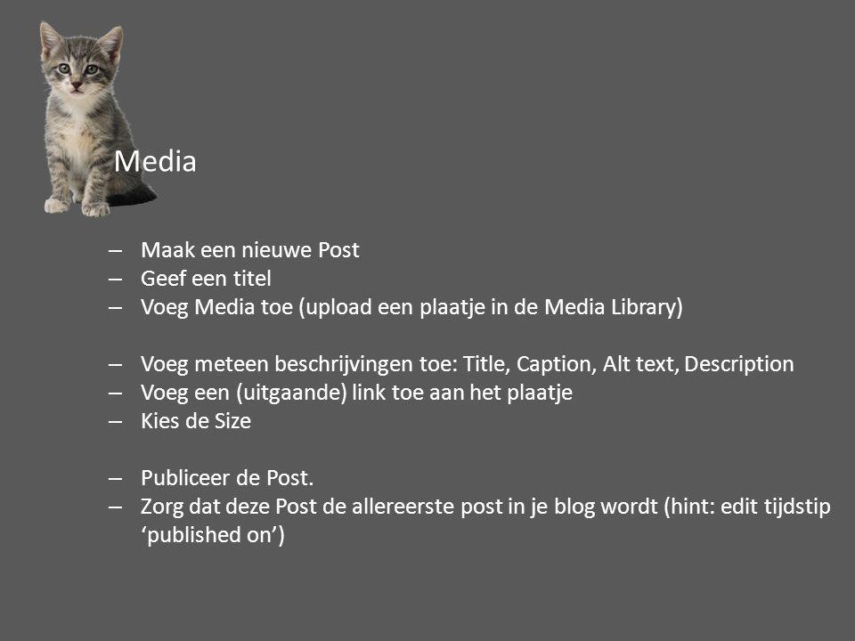 –Maak een nieuwe Post –Geef een titel –Voeg Media toe (upload een plaatje in de Media Library) –Voeg meteen beschrijvingen toe: Title, Caption, Alt te