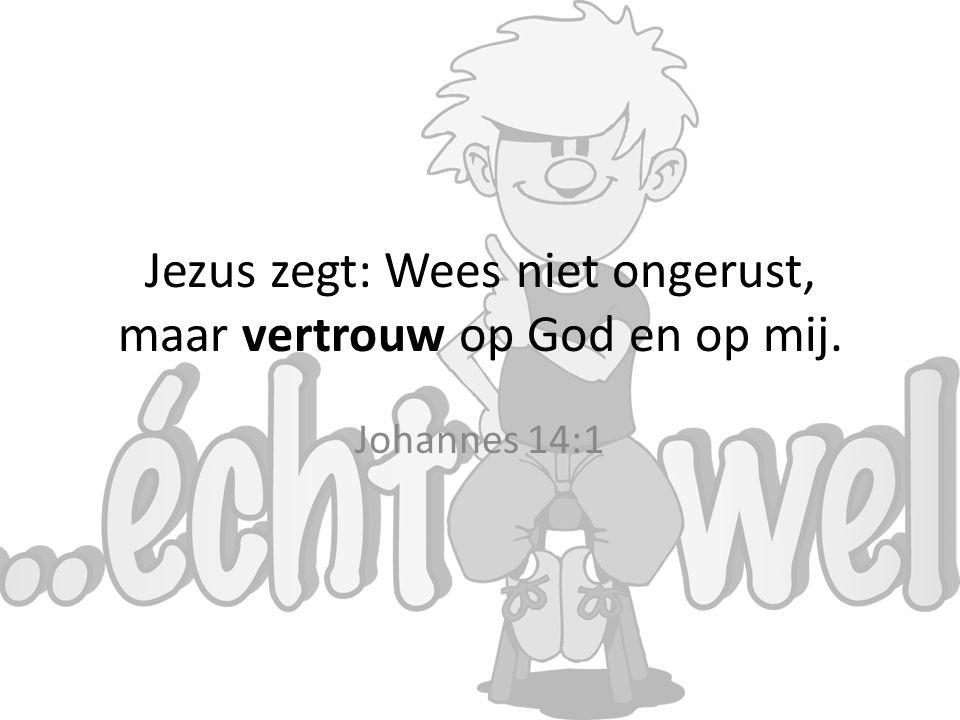 Jezus zegt: Wees niet ongerust, maar vertrouw op God en op mij. Johannes 14:1