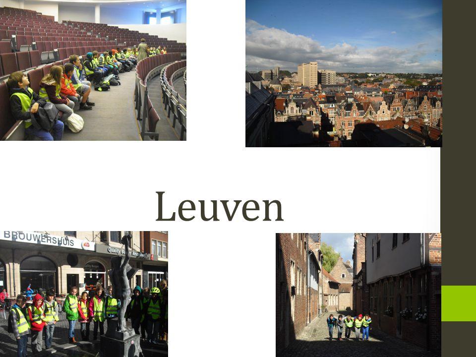 Mindmappen.• Jullie gingen vorige week donderdag op uitstap naar Leuven.
