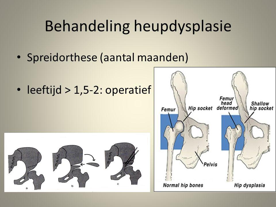Behandeling heupdysplasie • Spreidorthese (aantal maanden) • leeftijd > 1,5-2: operatief