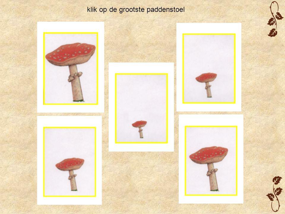 klik op de grootste paddenstoel