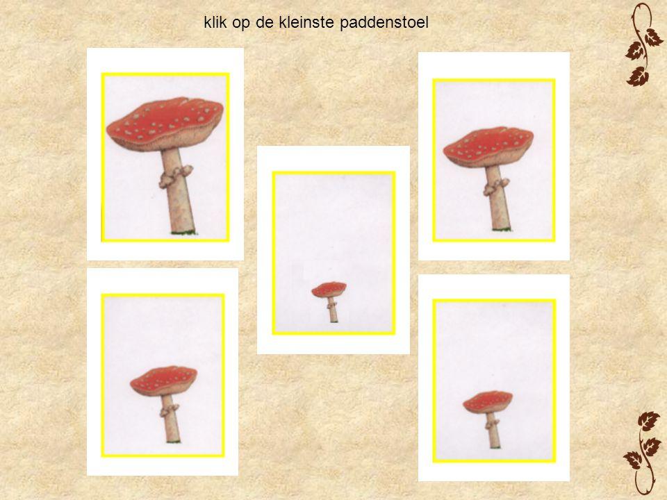 klik op de kleinste paddenstoel