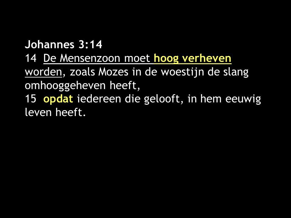 Johannes 3:14 14 De Mensenzoon moet hoog verheven worden, zoals Mozes in de woestijn de slang omhooggeheven heeft, 15 opdat iedereen die gelooft, in h