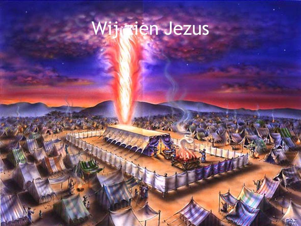 Wij zien Jezus