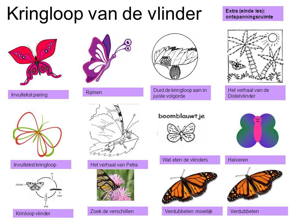 Bekijk onderstaand filmpje http://www.schooltv.nl/beeldbank/ clip/20050115_vaneitotvlinder0 BEGIN