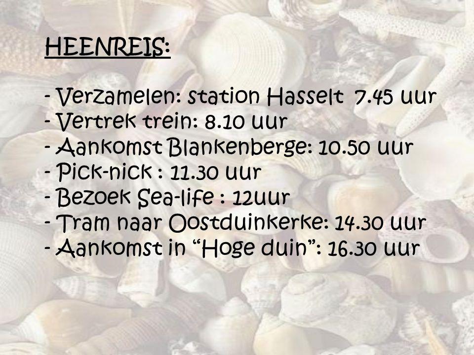 HEENREIS: - Verzamelen: station Hasselt 7.45 uur - Vertrek trein: 8.10 uur - Aankomst Blankenberge: 10.50 uur - Pick-nick : 11.30 uur - Bezoek Sea-lif