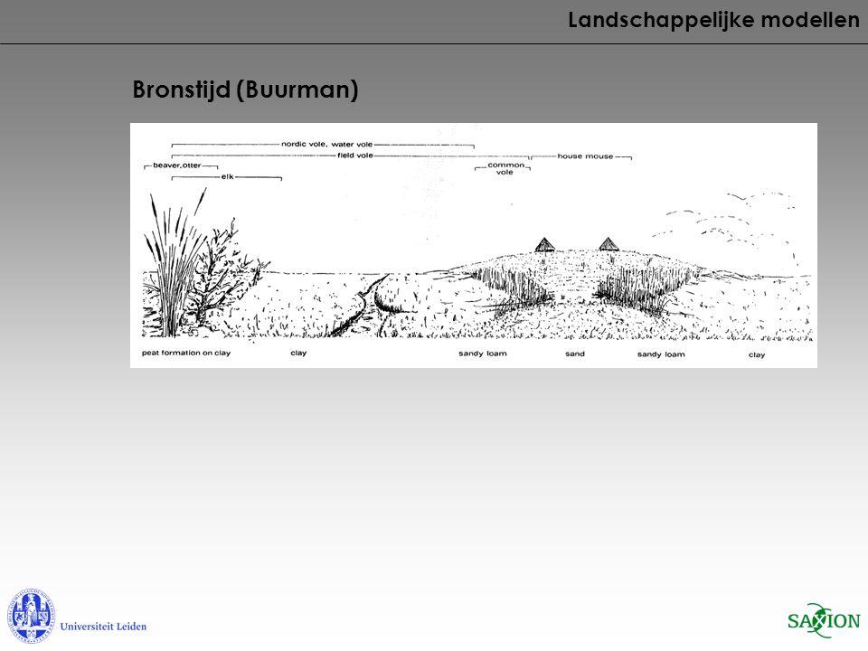 Bronstijd (Buurman) Landschappelijke modellen Verandering tarwe naar gerst Verandering droge mollusken naar natte mollusken Verandering naar voedseleconomie met nadruk op melkproductie Verandering naar natte onkruiden