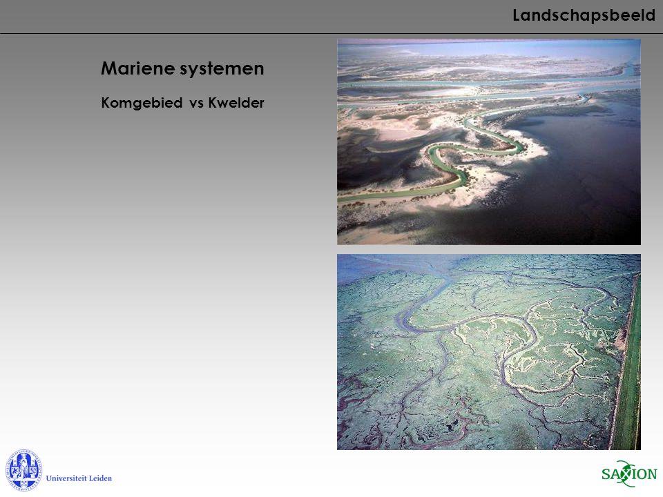 Mariene systemen Komgebied vs Kwelder Landschapsbeeld