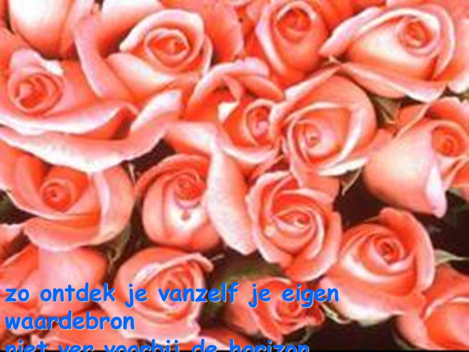geef maar je warme liefde door en volg verder je harten-spoor