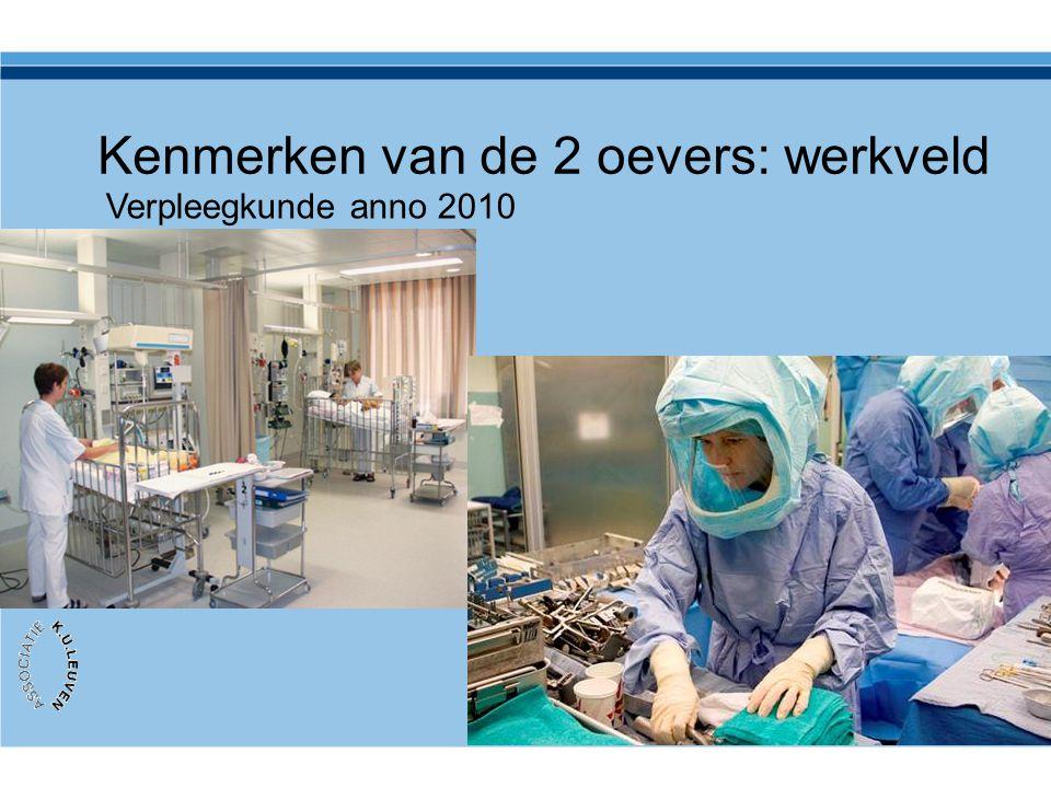 Kenmerken van de 2 oevers: werkveld Verpleegkunde anno 2010