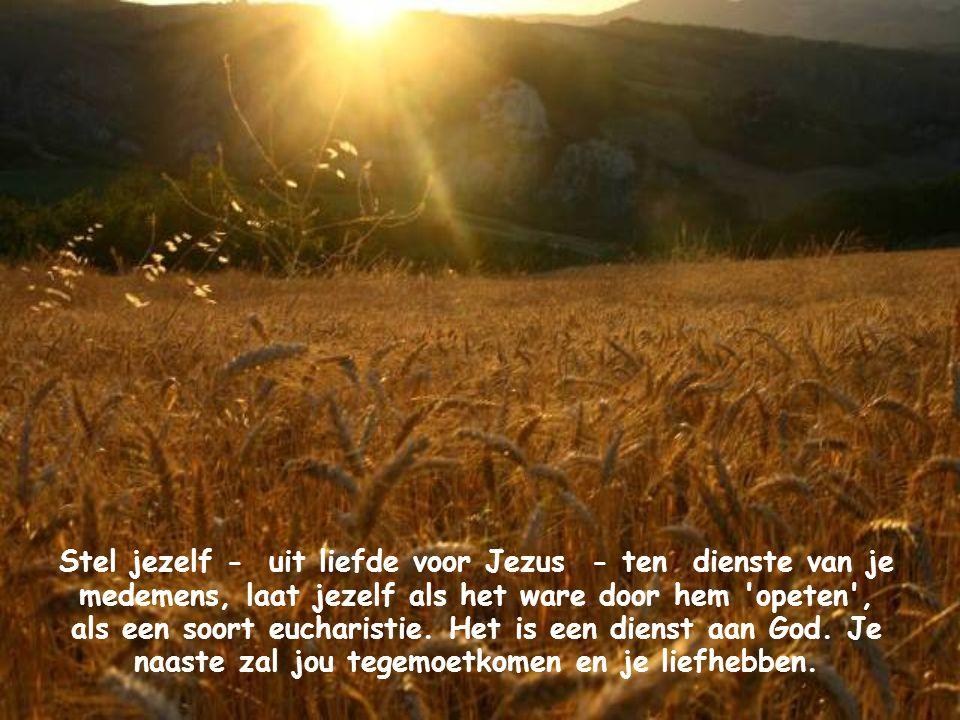Kijk daarom naar iedere medemens en geef je aan hem om jezelf aan Jezus te geven. Jezus zal zich dan aan jou geven. Dat is de wet van de liefde: