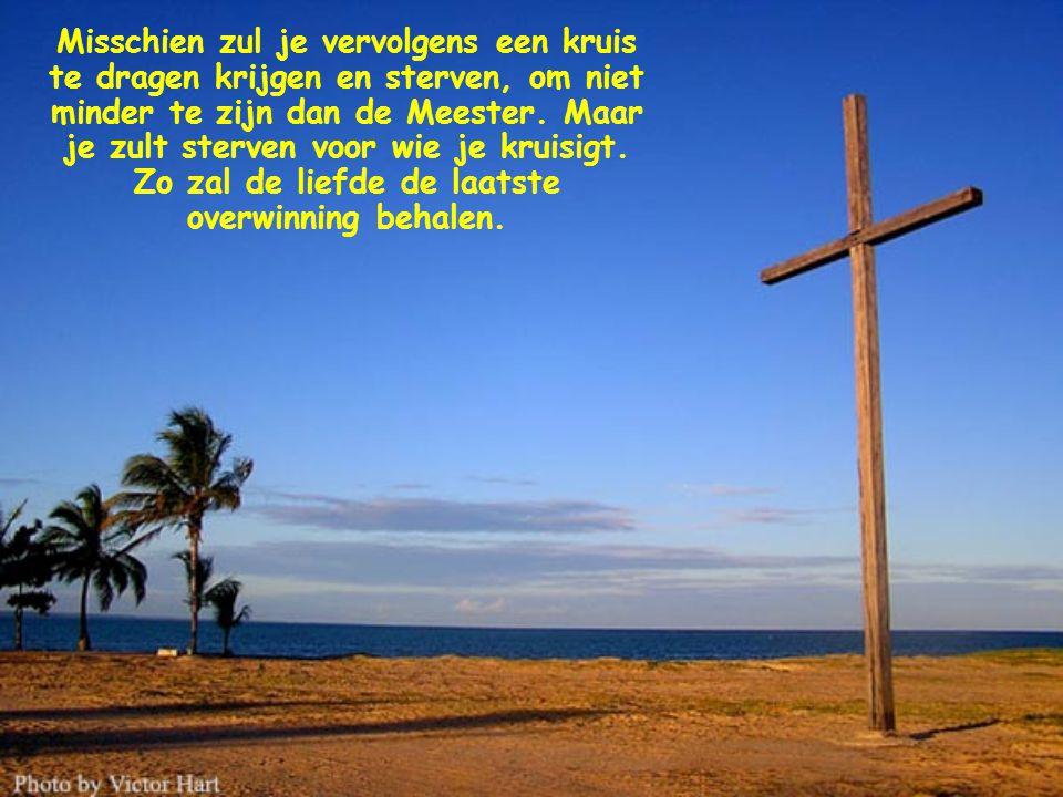 Dat is evangelie: het fascineert, omdat het Licht is en Liefde. Het wint mensen voor zich en steekt hen aan.