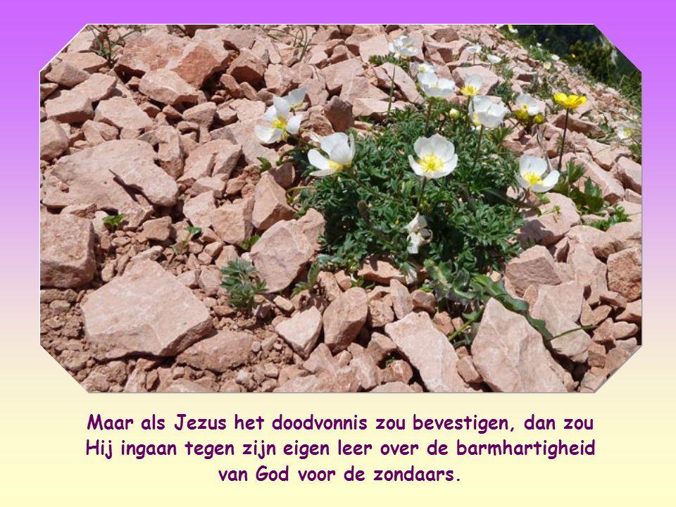 Maar als Jezus het doodvonnis zou bevestigen, dan zou Hij ingaan tegen zijn eigen leer over de barmhartigheid van God voor de zondaars.