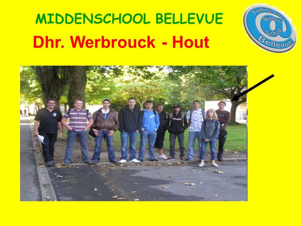 Dhr. Werbrouck - Hout MIDDENSCHOOL BELLEVUE