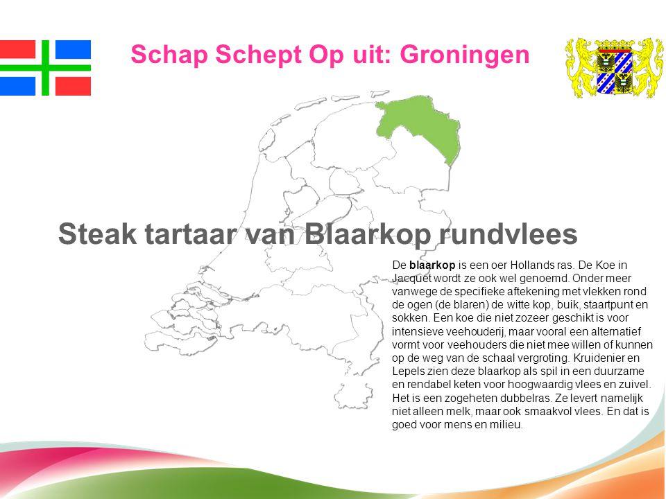 Steak tartaar van Blaarkop rundvlees Schap Schept Op uit: Groningen De blaarkop is een oer Hollands ras. De Koe in Jacquet wordt ze ook wel genoemd. O
