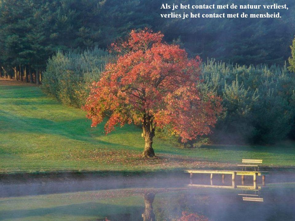 Als je het contact met de natuur verliest, verlies je het contact met de mensheid.