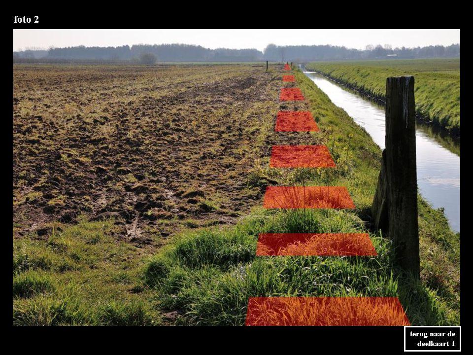 foto 31 terug naar de deelkaart 3 Vanaf de achterkant van het bedrijf kan het tracé weer op de linkeroever