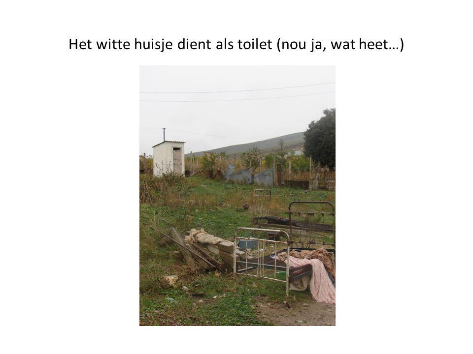 Het witte huisje dient als toilet (nou ja, wat heet…)
