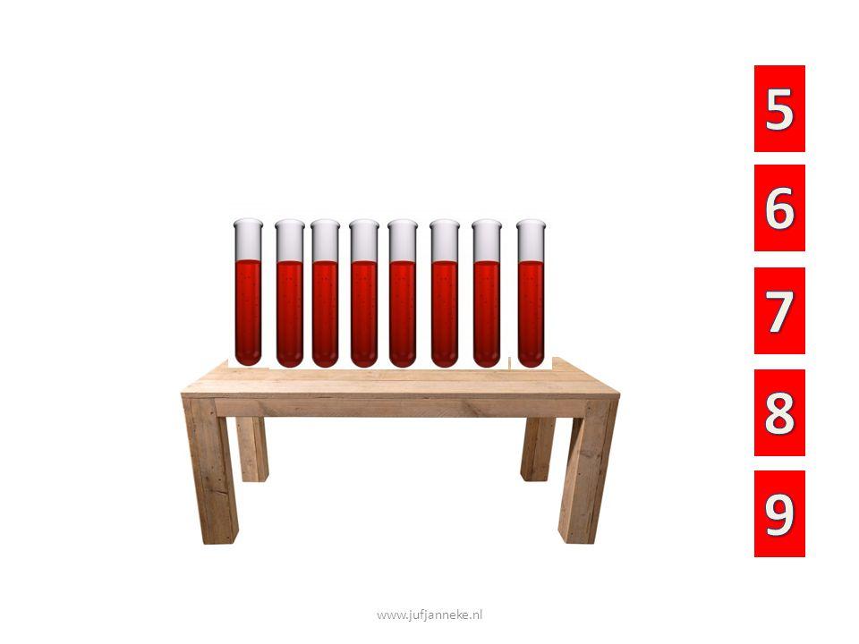 Hoeveel reageerbuisjes en flessen staan er op de tafel?
