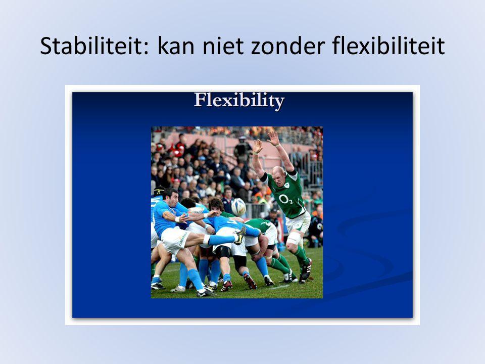 Stabiliteit: kan niet zonder flexibiliteit