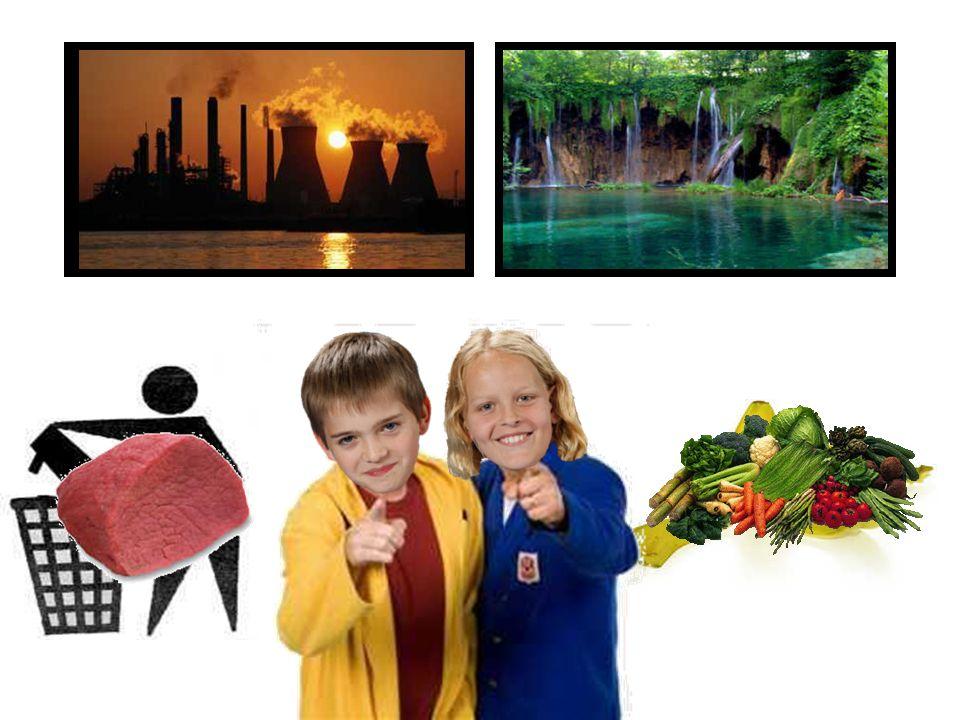 Als wij Beatrix waren zouden we dit doen Meer creatief Snoep wat gezond is Schone fabrieken Geen dieren leed!