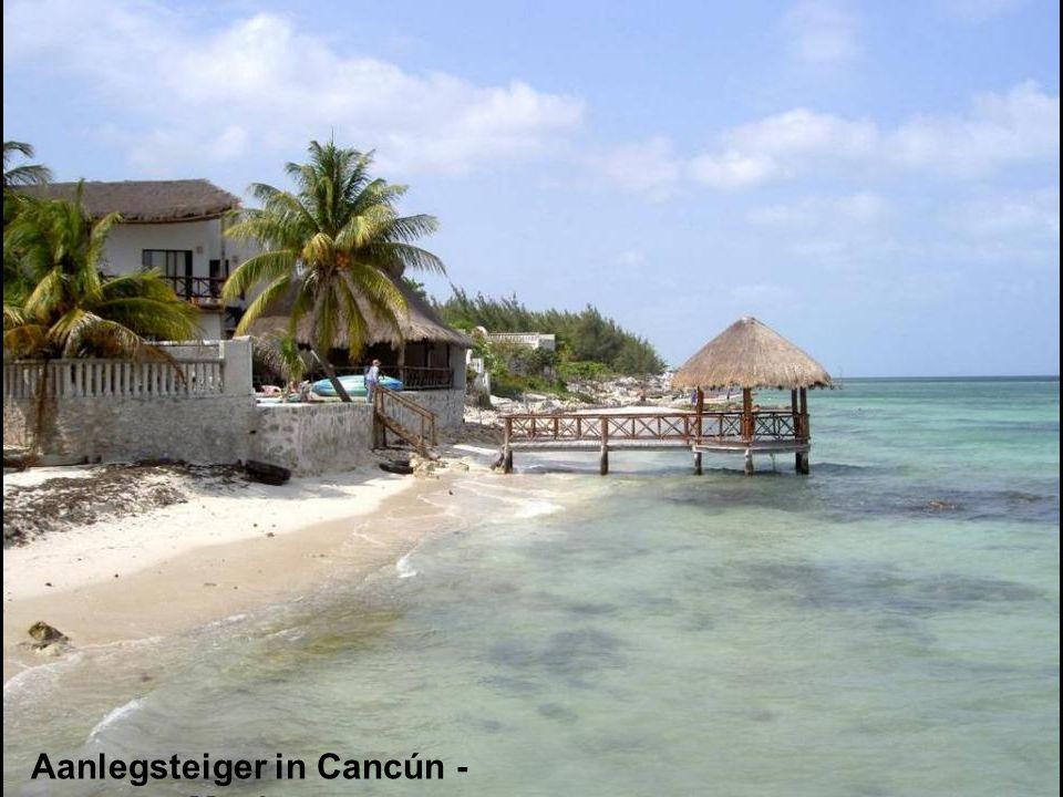 Koraalrif in de Maupiti lagune – Frans Polunesië