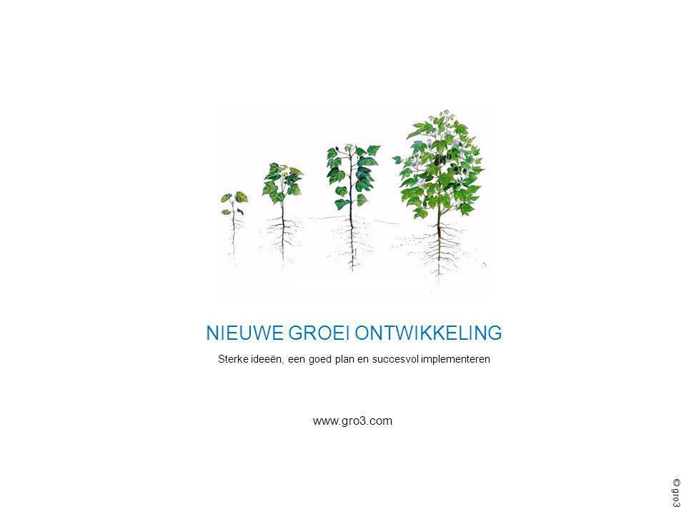 © gro3 www.gro3.com NIEUWE GROEI ONTWIKKELING Sterke ideeën, een goed plan en succesvol implementeren