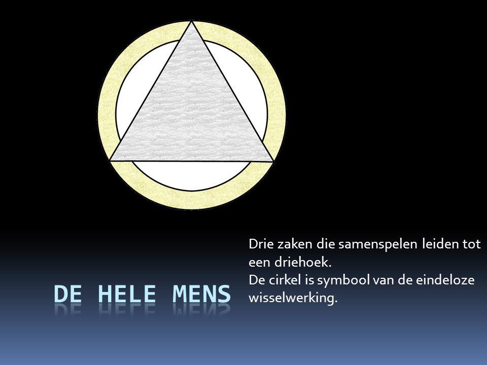 Drie zaken die samenspelen leiden tot een driehoek. De cirkel is symbool van de eindeloze wisselwerking.