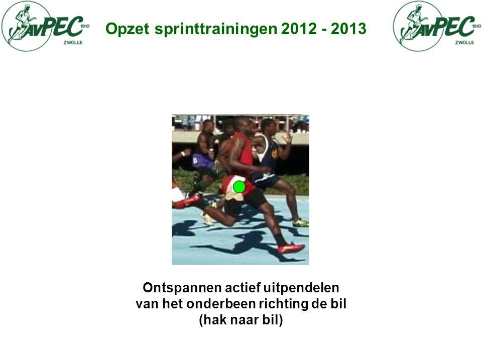 Opzet sprinttrainingen 2012 - 2013 Ontspannen actief uitpendelen van het onderbeen richting de bil (hak naar bil)