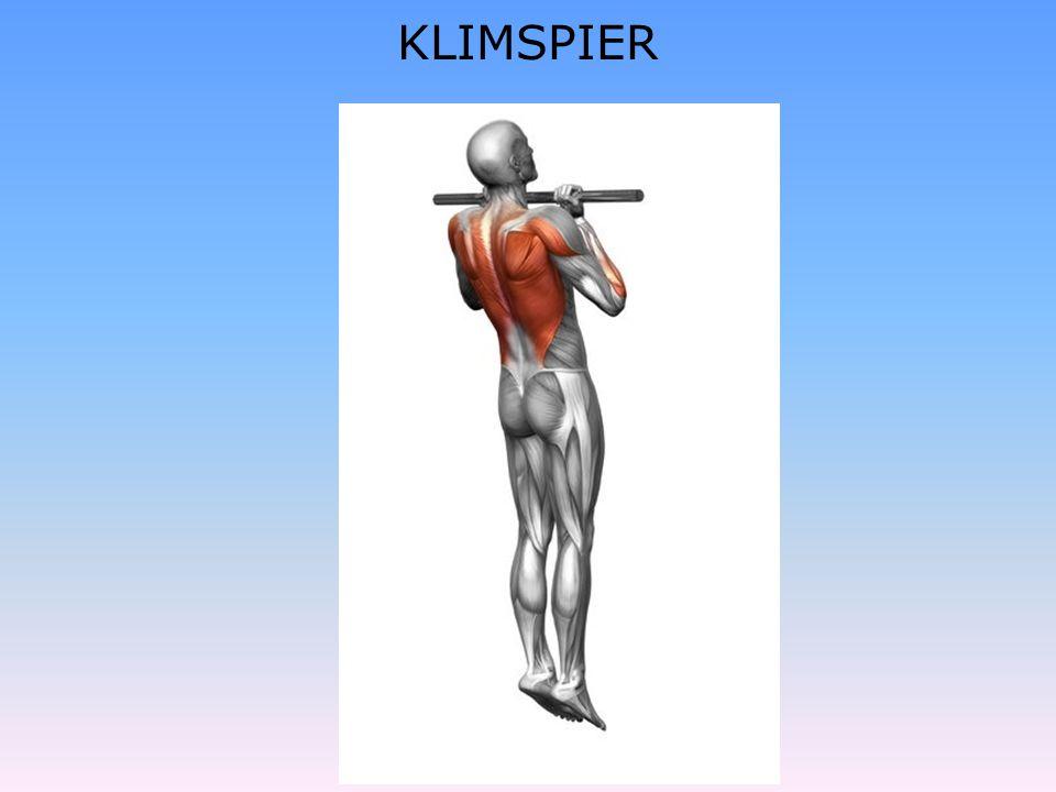 KLIMSPIER