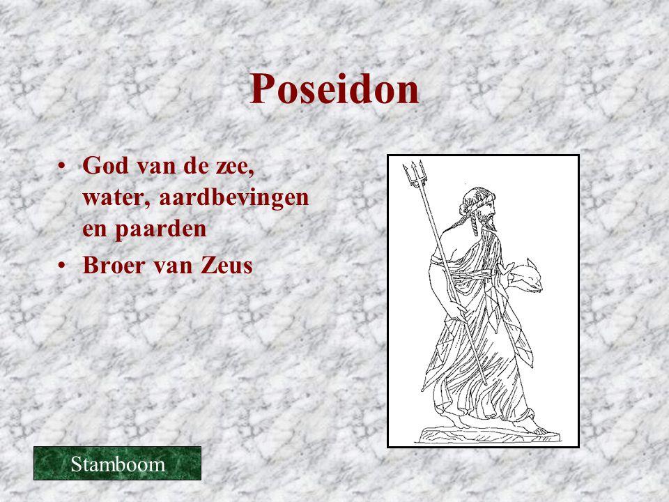 Poseidon •God van de zee, water, aardbevingen en paarden •Broer van Zeus Stamboom