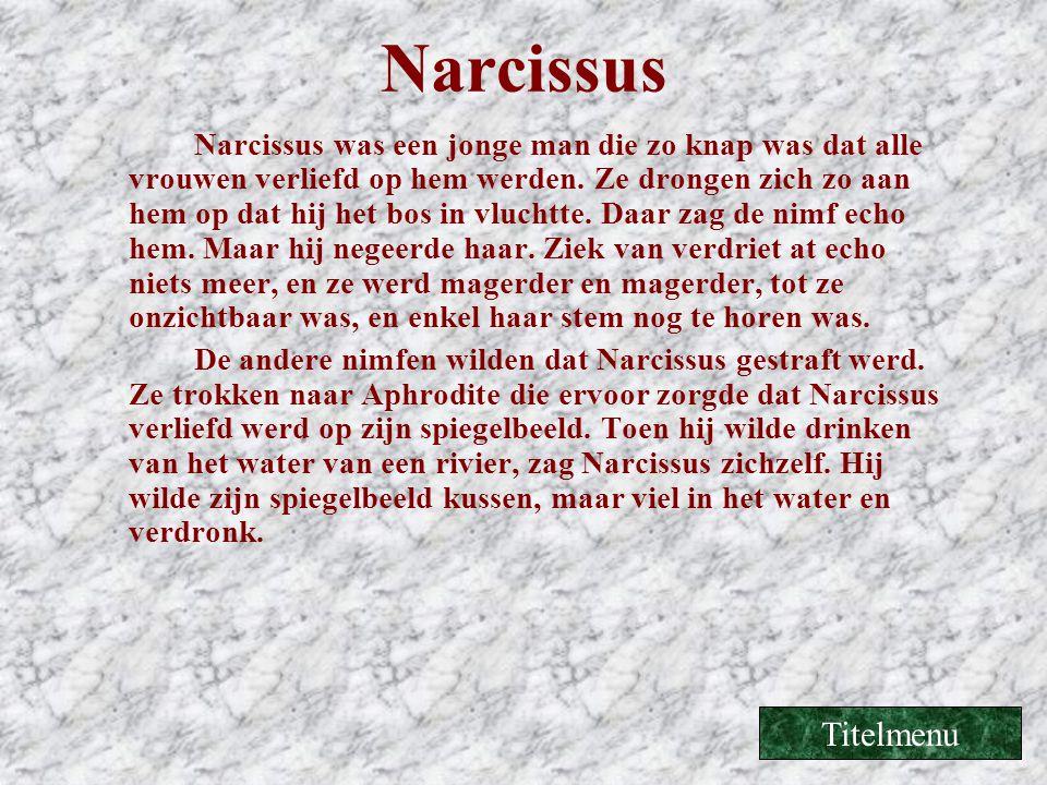 Narcissus Narcissus was een jonge man die zo knap was dat alle vrouwen verliefd op hem werden. Ze drongen zich zo aan hem op dat hij het bos in vlucht