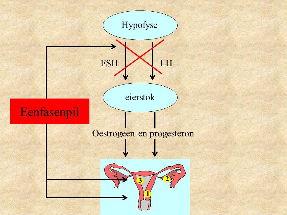 Hypofyse eierstok LHFSH Oestrogeen en progesteron Eenfasenpil