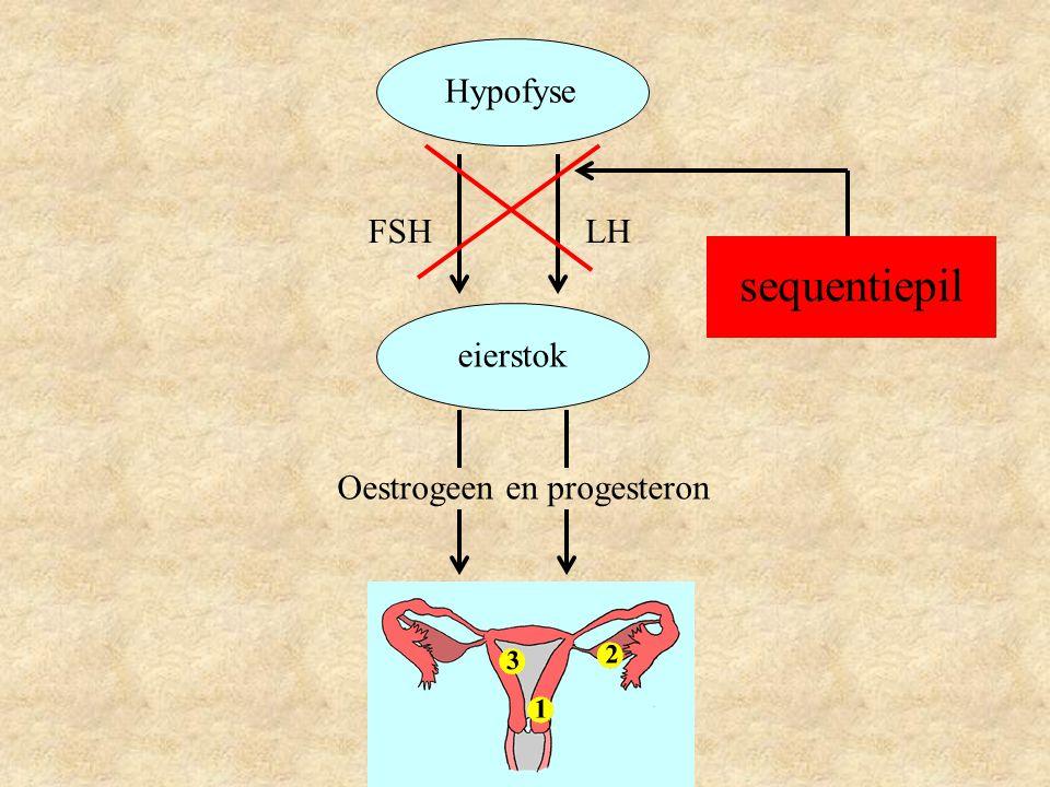 Hypofyse eierstok LHFSH Oestrogeen en progesteron sequentiepil