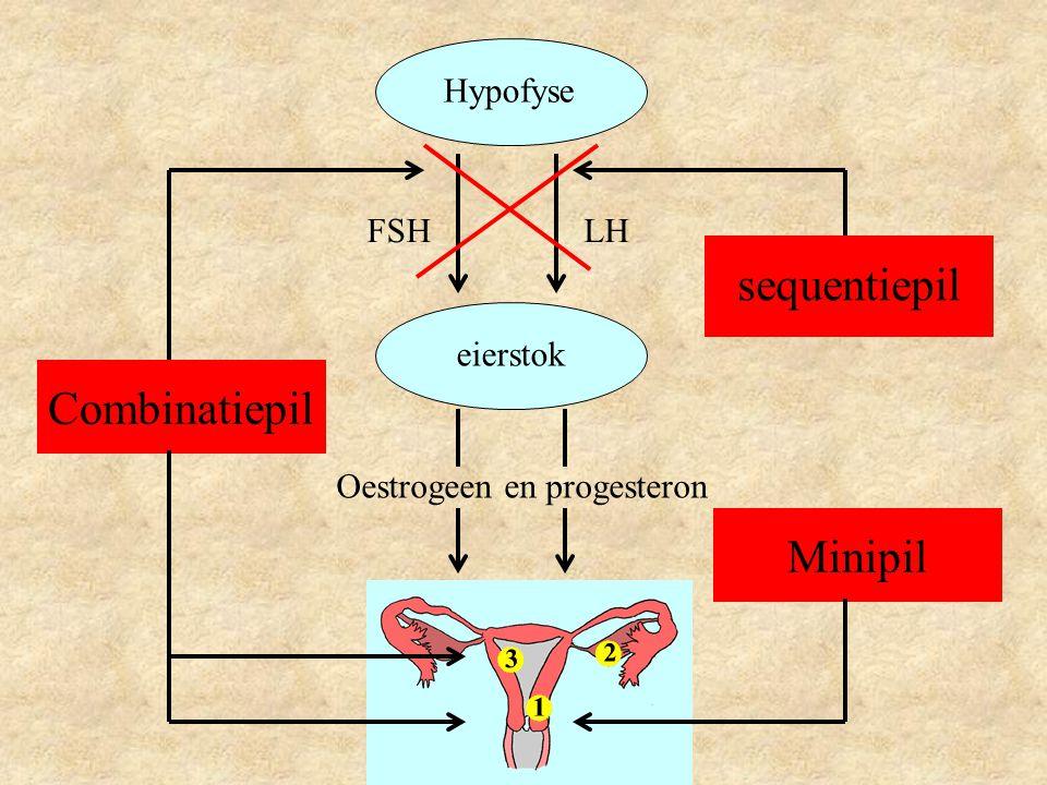 Hypofyse eierstok LHFSH Oestrogeen en progesteron Combinatiepil sequentiepil Minipil