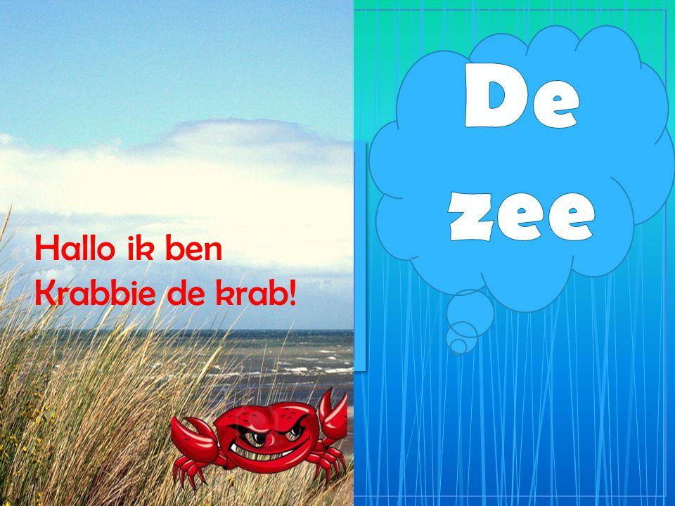 Hallo ik ben Krabbie de krab!