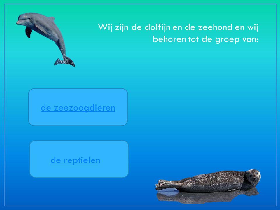 Wij zijn de dolfijn en de zeehond en wij behoren tot de groep van: de zeezoogdieren de reptielen
