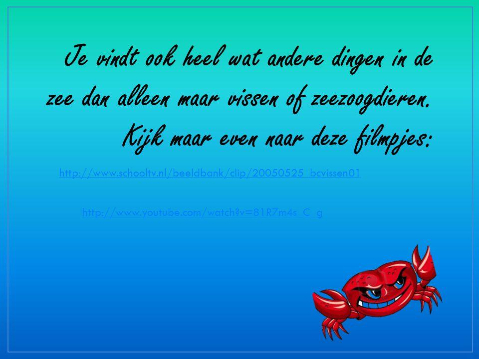 http://www.schooltv.nl/beeldbank/clip/20050525_bcvissen01 http://www.youtube.com/watch?v=81R7m4s_C_g