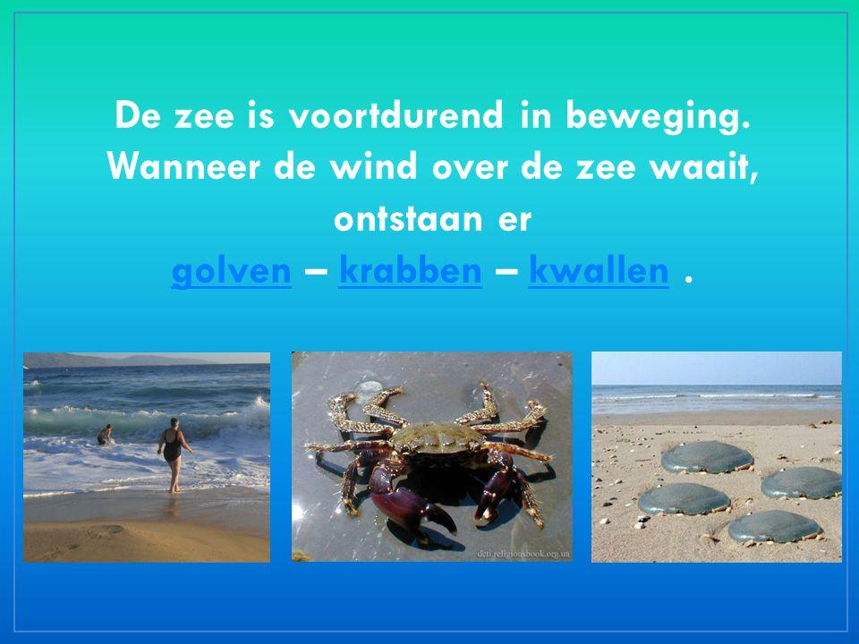 De zee is voortdurend in beweging. Wanneer de wind over de zee waait, ontstaan er golvengolven – krabben – kwallen.krabbenkwallen
