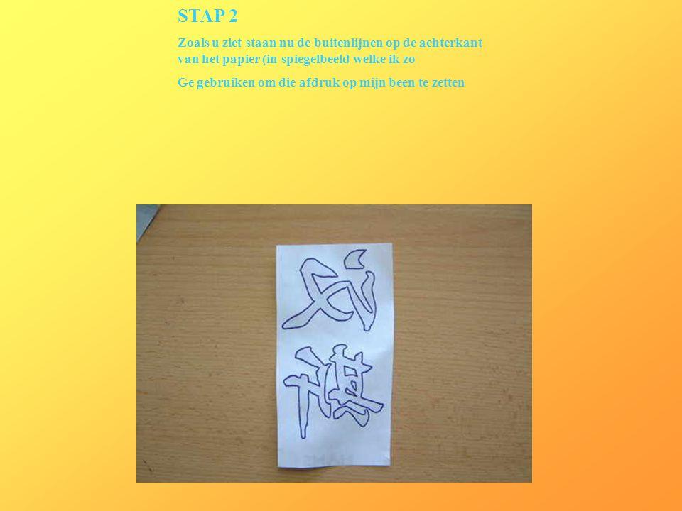 STAP 2 Zoals u ziet staan nu de buitenlijnen op de achterkant van het papier (in spiegelbeeld welke ik zo Ge gebruiken om die afdruk op mijn been te z