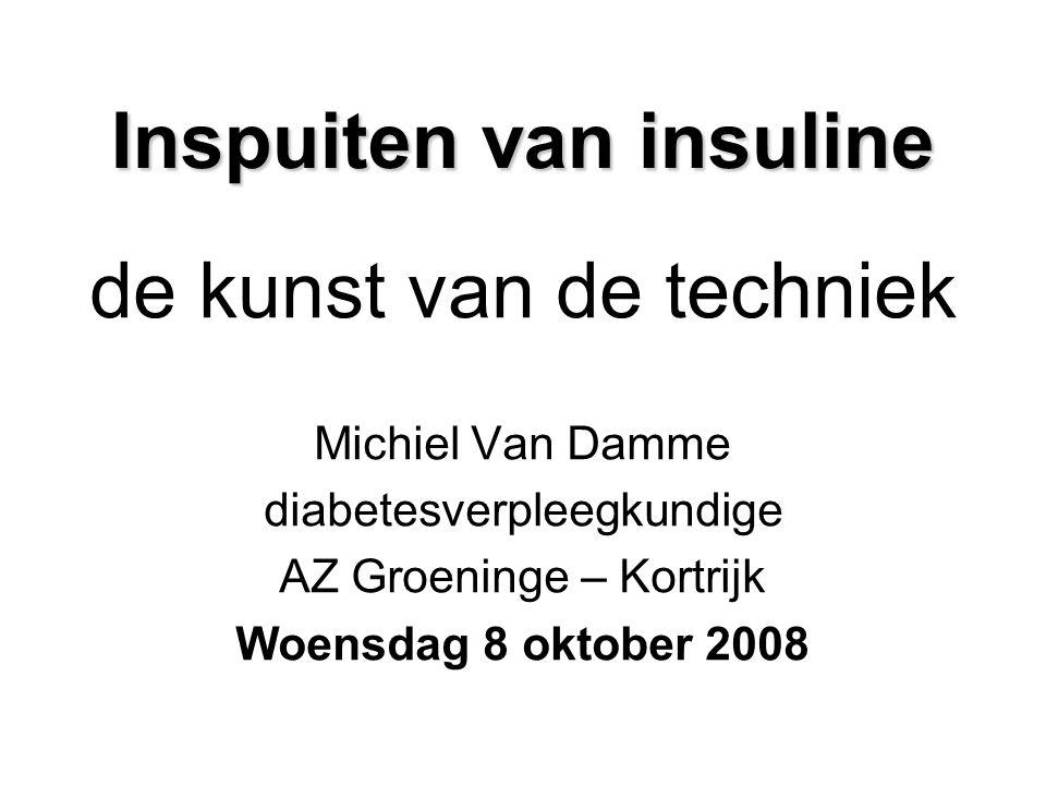 Inspuiten van insuline de kunst van de techniek Michiel Van Damme diabetesverpleegkundige AZ Groeninge – Kortrijk Woensdag 8 oktober 2008