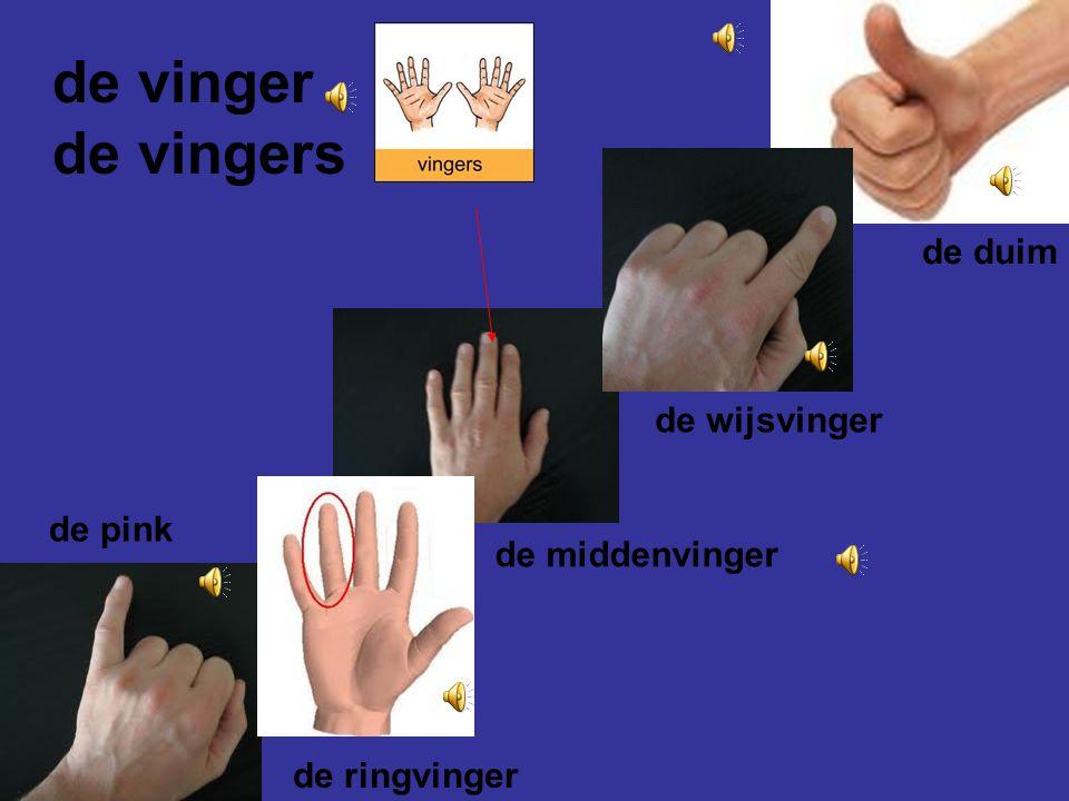 de hand de handen Met de handen gaan we zwaaien. wijzen klappen zwaaien krabben